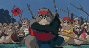 tanuki002