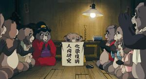 tanuki005