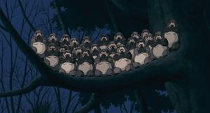 tanuki040